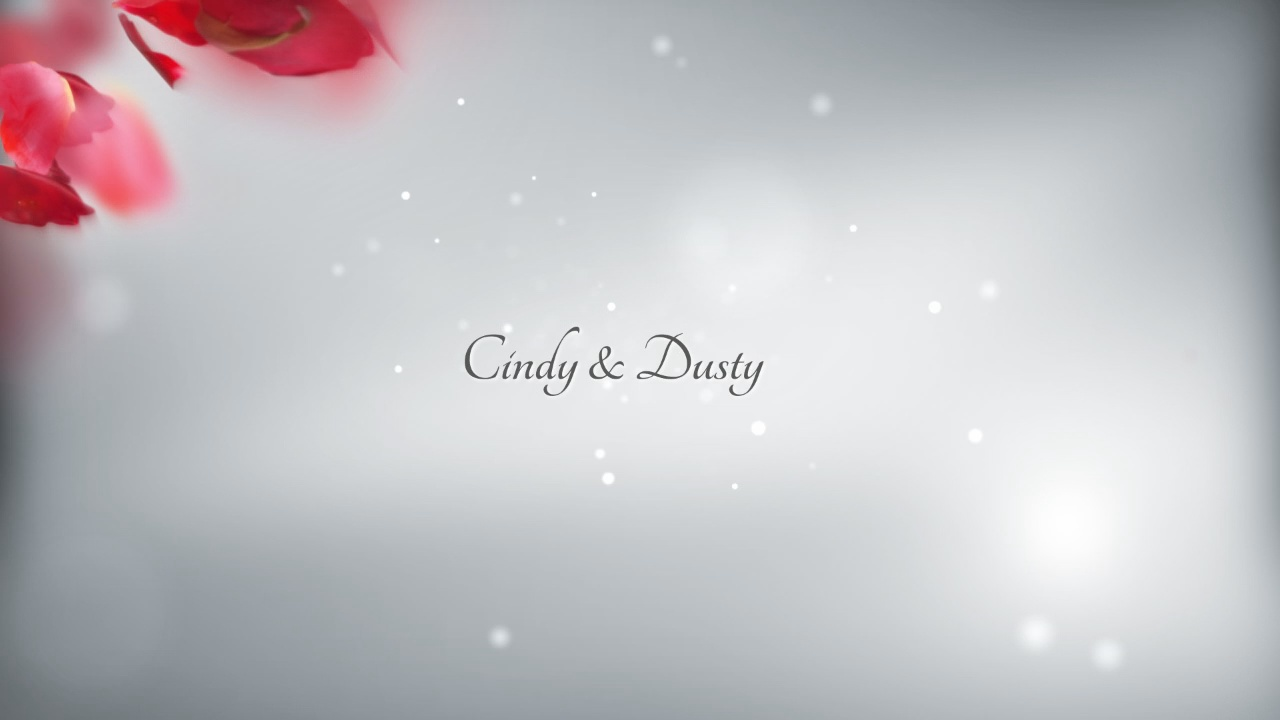 Cindy and Dusty Wedding Highlights